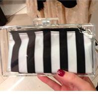 Bolso caja transparente Zara
